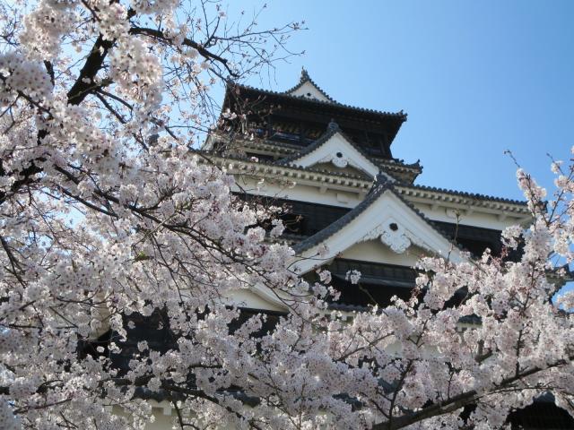 熊本で働く薬剤師さんのリアルな業種別年収