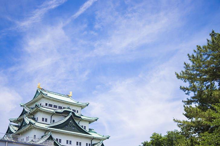 愛知県で働く薬剤師さんのリアルな業種別年収