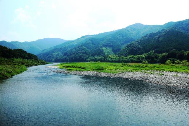 高知県で働く薬剤師さんのリアルな業種別年収